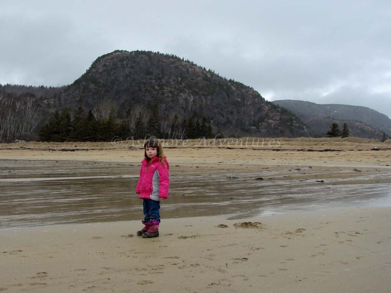 3/12/13 Amelia in front of Beehive