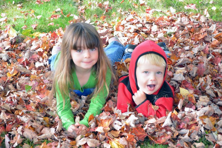 10/5/13 Amelia and Desmond having fun in the leaves at Mimi's house.