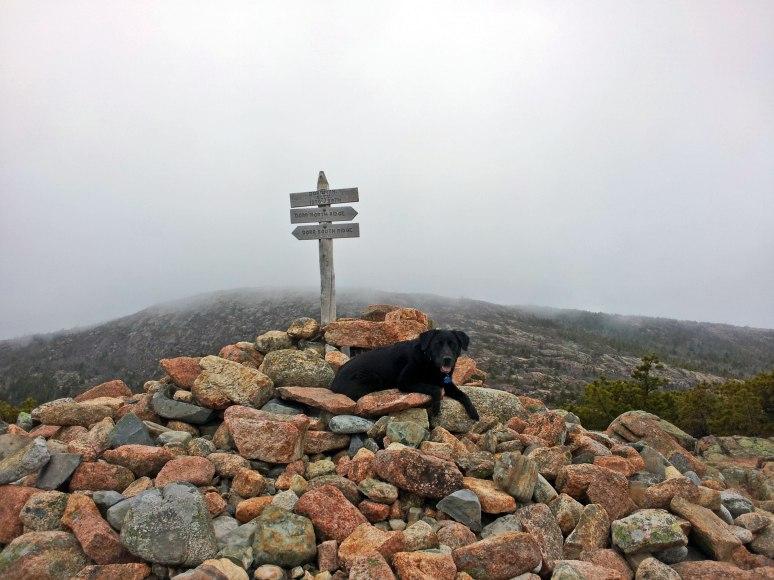 Katie at the summit