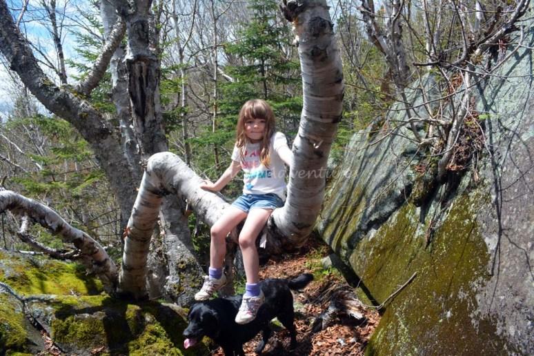 5-25-14 Tumbledown Mtn hike (24)