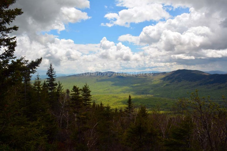 5-25-14 Tumbledown Mtn hike (31)
