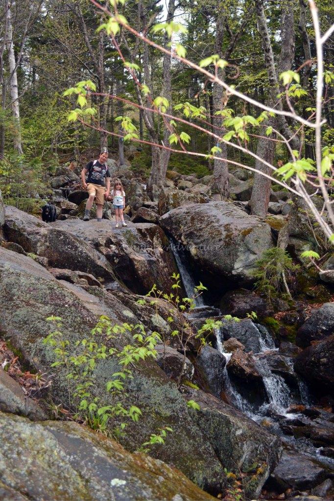5-25-14 Tumbledown Mtn hike (5)