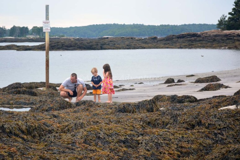 8/21/14 Exploring Pemaquid Beach with cousin Desmond and Uncle Ryan.