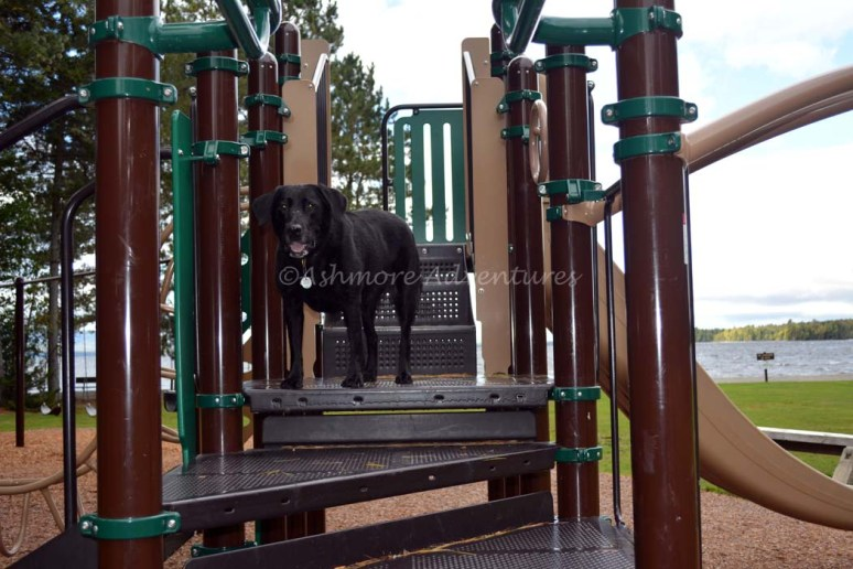 9/22/14 Playing on the playground at Lily State Park.